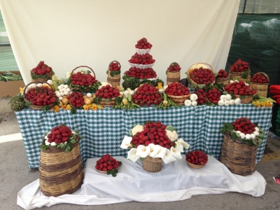 Mgarr Strawberry Festival 2015